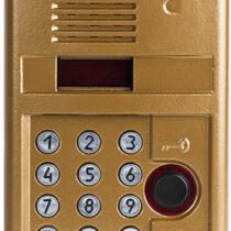 Вызывная аудиопанель DP303-RD24 (1036)
