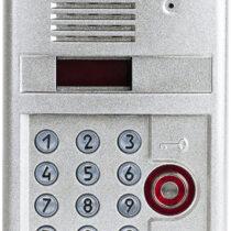Вызывная видеопанель DP303-TDC22 (9007)