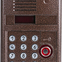 Вызывная аудиопанель DP300-TD22 (медь)